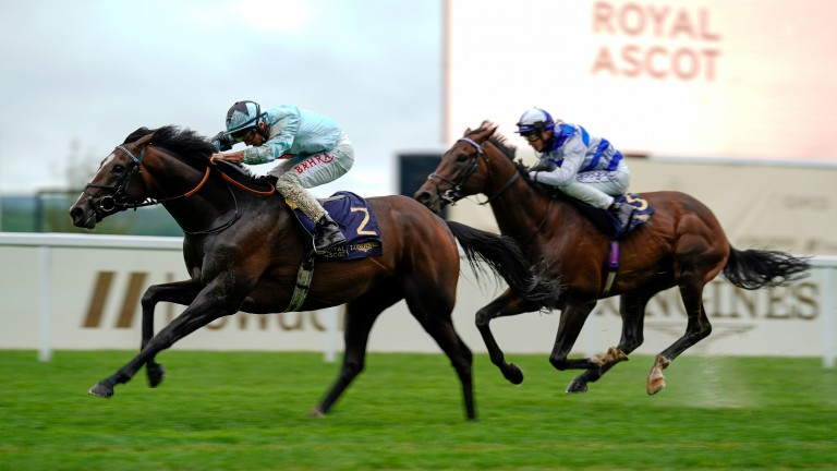 Alenquer sees off Tasman Bay in the 'Ascot Derby'