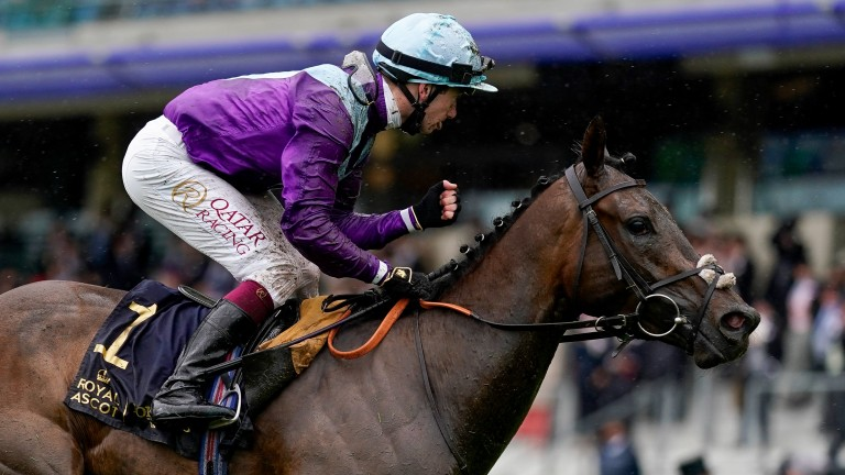 Alcohol Free: won the Coronation Stakes on heavy ground