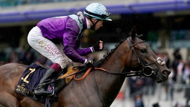 ASCOT, ENGLAND - JUNE 18: Oisin Murphy celebrates after riding Alcohol Free to win The Coronation Stakes on Day Four of the Royal Ascot Meeting at Ascot Racecourse on June 18, 2021 in Ascot, England. A total of twelve thousand racegoers made up of owners