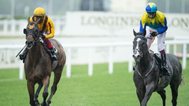 Commonwealth Cup: Campanelle (left) won the race in the stewards' room