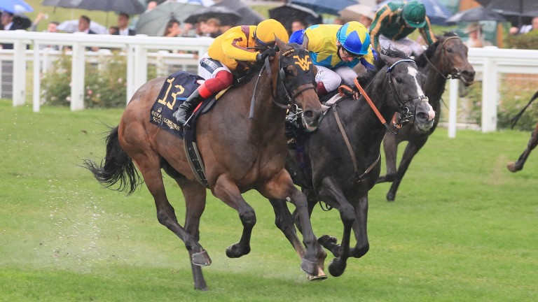 Commonwealth Cup: Campanelle (left) won the Group 1 in the stewards' room on Friday