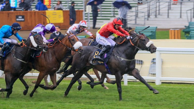 Significantly: Palace Of Holyroodhouse Stakes winner is out of a Mayson mare