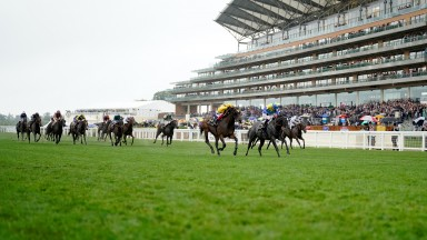ASCOT, ENGLAND - JUNE 18: Frankie Dettori riding Campanelle (L, yellow) win The Commonwealth Cup in the stewards room after finishing second in the race to Oisin Murphy riding Dragon Symbol (R, blue/yellow) on Day Four of the Royal Ascot Meeting at Ascot