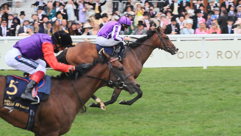 Point Lonsdale (far side): edges out Reach For The Moon in the Chesham at Royal Ascot