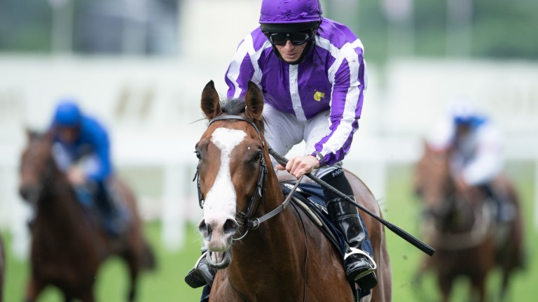 The Queen's Reach For The Moon finished second to Point Lonsdale (pictured) in the opening Chesham Stakes