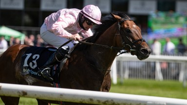 Iowa and Michael Hussey land the BoyleSports Ulster Derby at Down Royal