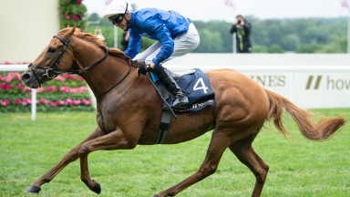 Creative Force and James Doyle win the Jersey StakesAscot 19.6..21 Pic: Edward Whitaker/Racing Post