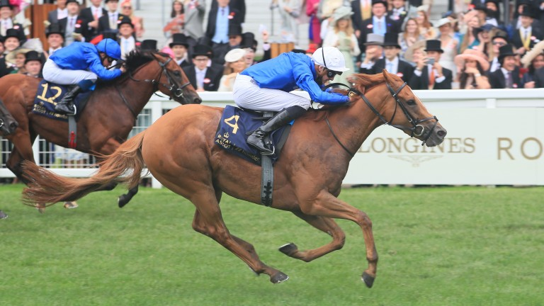 Creative Force (near side) had a length and a quarter to spare over stablemate Naval Crown