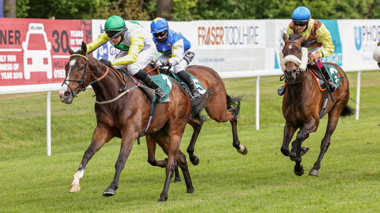 Out Of Breath lands the hat-trick after scoring at Hamilton on Wednesday