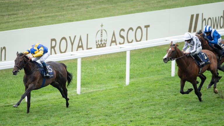 Wonderful Tonight (left): returned with a superb win in the Hardwicke Stakes