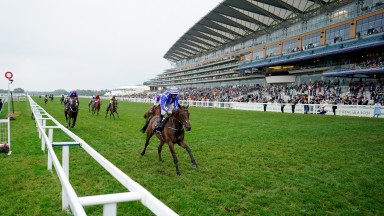 Stratum: the Royal Ascot winner has strong claims at Galway