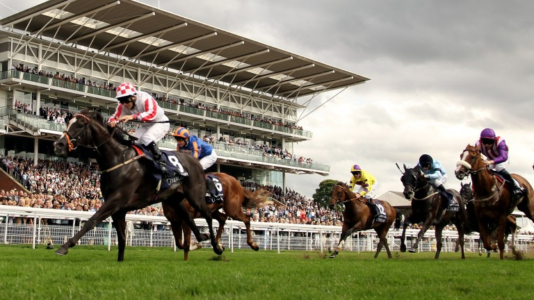'It was just a dream'– Sole Power secures a shock 100-1 victory in the 2010 Nunthorpe