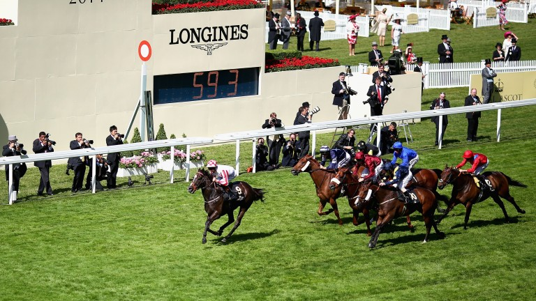 The field chases Sole Power home in the 2014 King's Stand Stakes at Royal Ascot