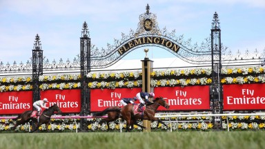REKINDLING Ridden by Corey Brown and Trained by Joseph O'Brien win at Emirates Melbourne Cup at Flemington 7/11/17Photograph by Grossick Racing Photography 0771 046 1723