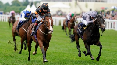 Rohaan (black and orange): the 20,000gns horses-in-training sale purchase looks an almighty bargain after landing the Wokingham Stakes
