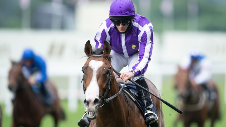 Point Lonsdale: Chesham Stakes winner sets a high standard in the Tyros Stakes