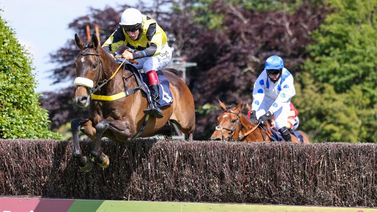 Classical Milano: Jonathon Bewley steered his father's horse to victory at Hexham on Sunday
