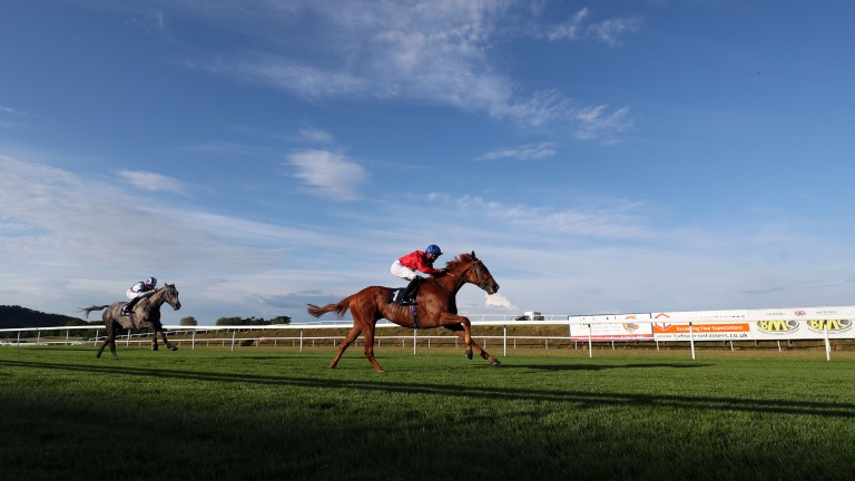Ametist holds form after beating subsequent Royal Ascot winner Lola Showgirl at Chepstow