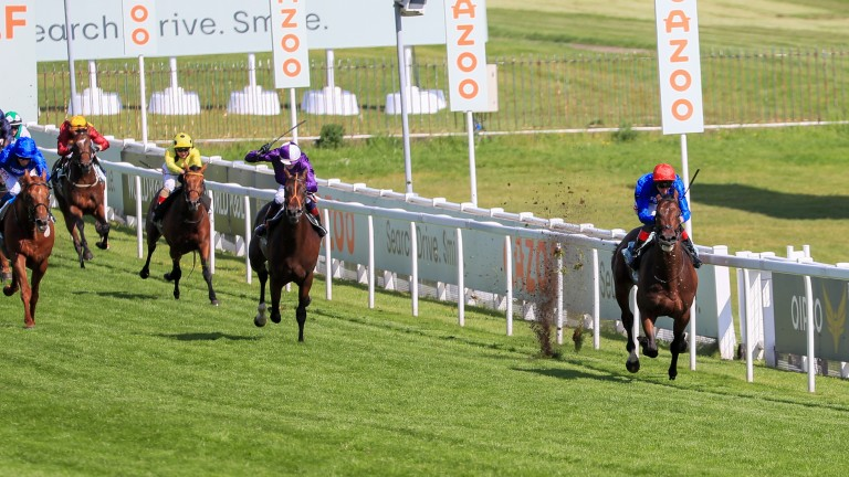 Adayar (red cap), Mojo Star (middle) and Hurricane Lane (blue cap) could all clash again on Town Moor
