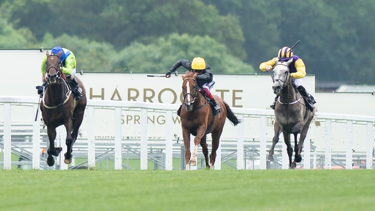 Three-time Gold Cup winner Stradivarius was put in his place by Subjectivist at Royal Ascot