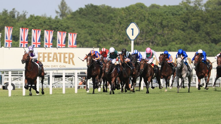 Poetic Flare was mightily impressive at Royal Ascot
