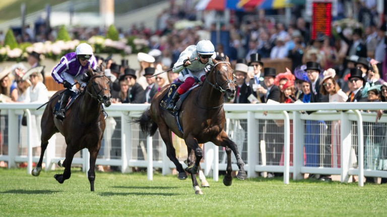 Palace Pier: Queen Anne winner is the leading light for Invincible Spirit's son Kingman