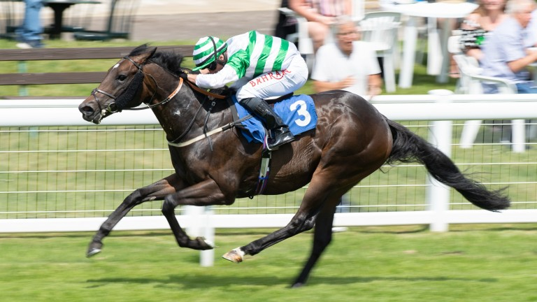 Dairerin builds on a promising run in the Woodcote in the first leg of a treble on the day for Tom Marquand
