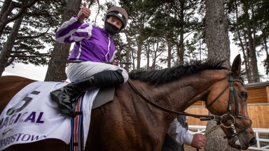 Magical: granddaughter of Cassandra Go after winning the Irish Champion Stakes