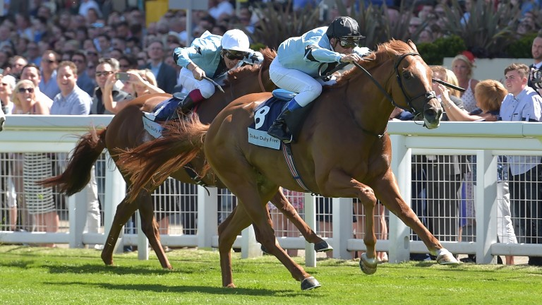 In Salutem: won at the Shergar Cup in 2016