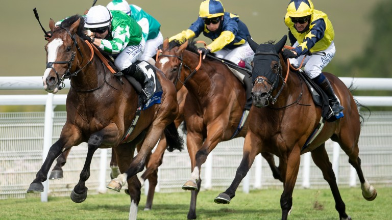 Pablo Escobarr (white cap, left of picture) and Desert Encounter (yellow stars on sleeves, right) lock horns again at Newmarket on Saturday