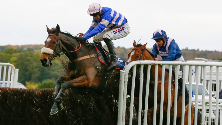 Diego Du Charmil jumps the last in a dramatic race at Ascot, but badly impedes Capeland