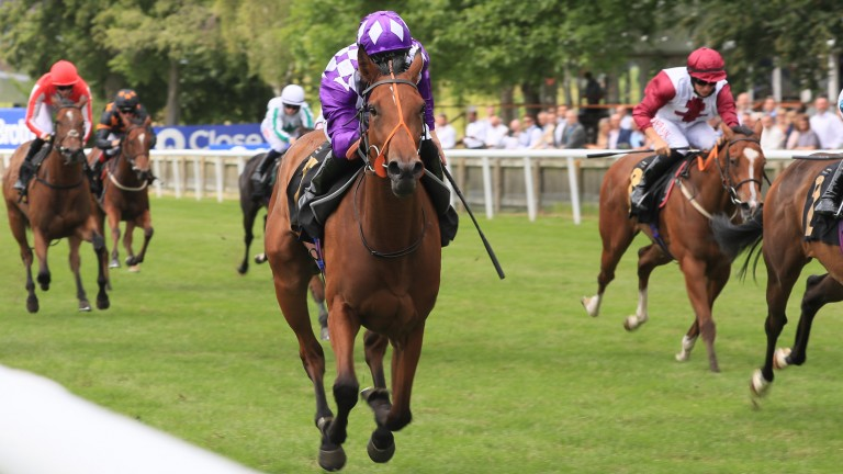 System wins the Empress Stakes under Pat Dobbs at Newmarket last month
