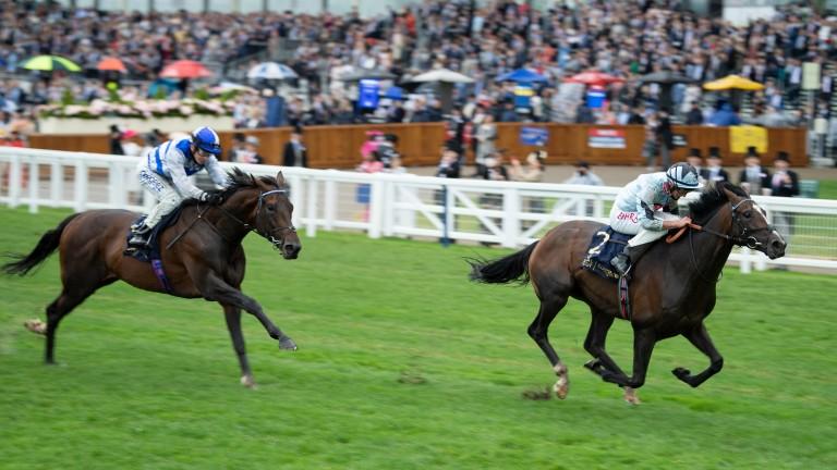 Alenquer: landed the King Edward VII Stakes at Royal Ascot