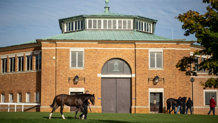 Tattersalls Ireland's September Yearling Sale is confirmed to be held in Newmarket