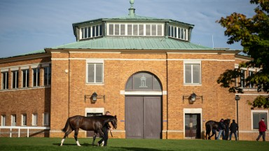 Tattersalls: the Goffs Orby Sale will relocate from Kildare to Park Paddocks in Newmarket