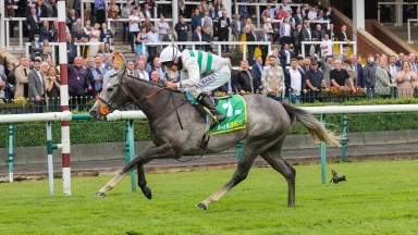 Alpinista: proved she can handle slow ground at Haydock