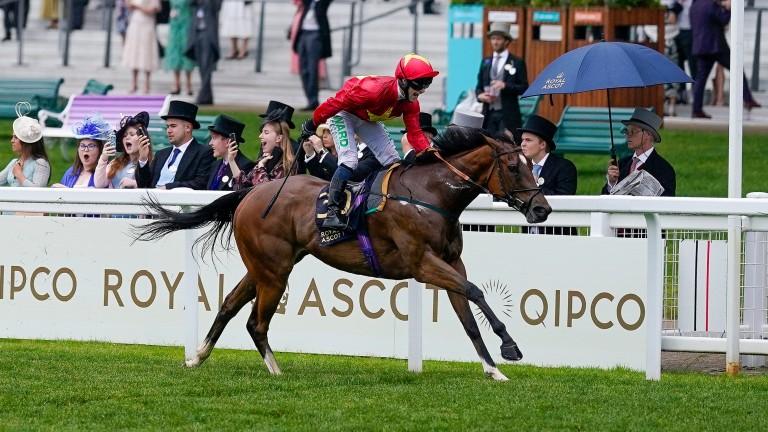 Highfield Princess: won the Buckingham Palace Stakes at Royal Ascot