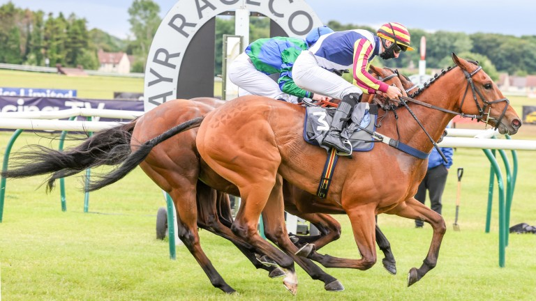 Trainer Katie Scott is dreaming of a £30,000 prize pot at Musselburgh later this month