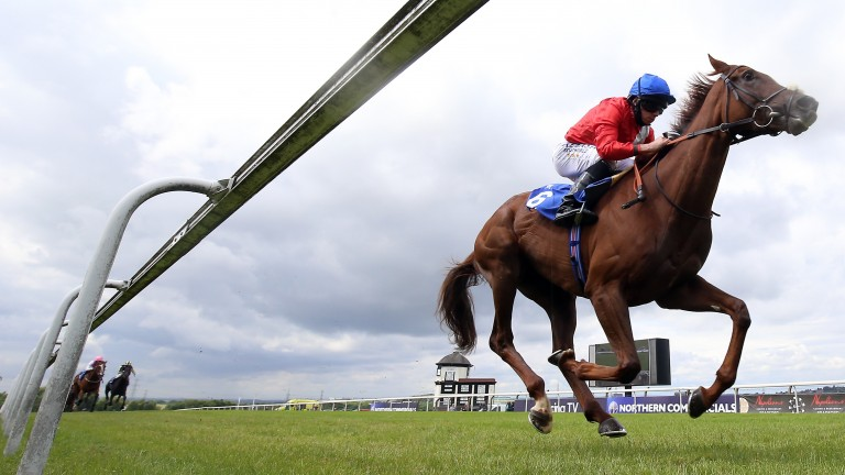 Lights On lands the Pipalong Stakes