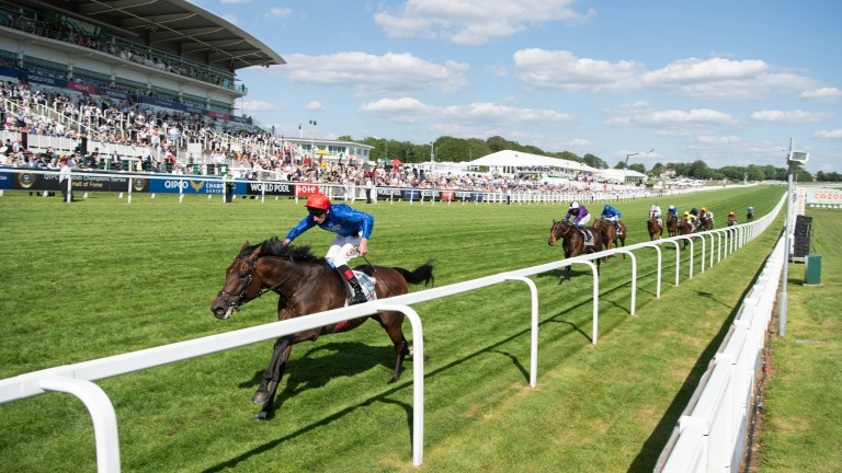 Adayar: was 16-1 in the Derby but won handsomely