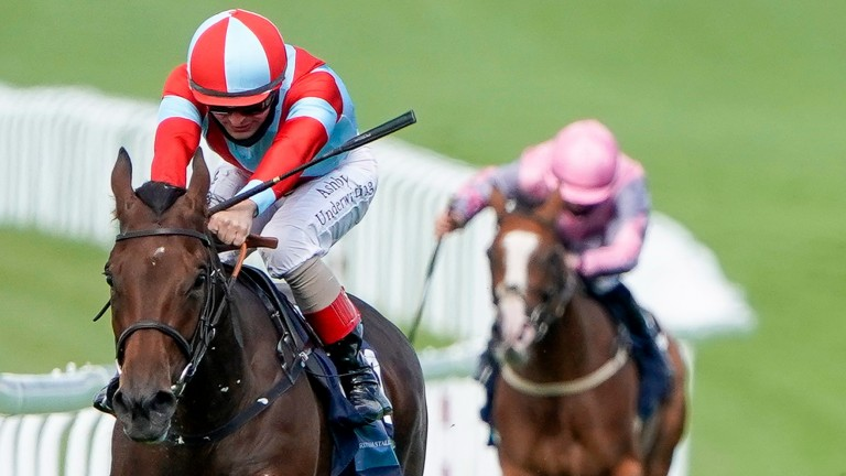 Believe In Love has been hugely progressive over the last 12 months and boasts course-winning form at Goodwood