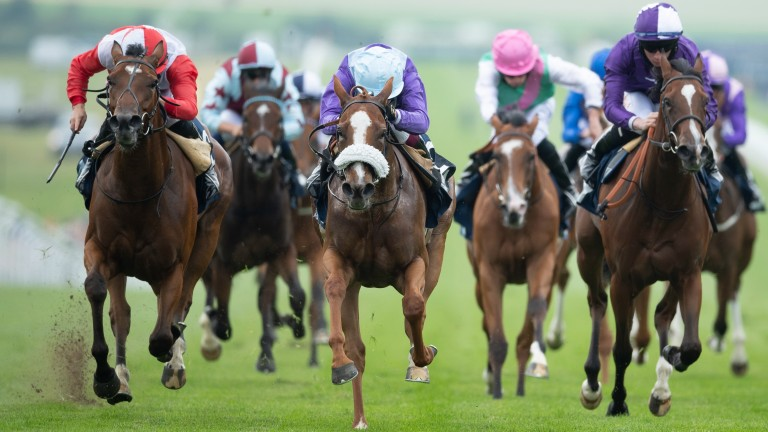Oisin Murphy may go looking for a Rose Bowl hat-trick with Frankella (centre)