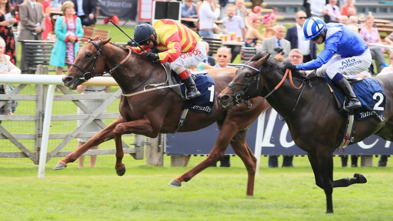 Sir Ron Priestley: Supplemented for the Goodwood Cup after success in the Princess Of Wales's Stakes