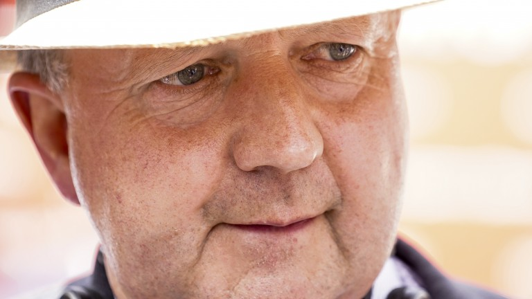 Tim Easterby: sends four runners to the competitive York sprint