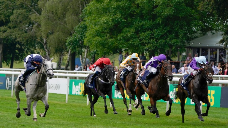 Snow Lantern (left) comes home late and fast under Sean Levey