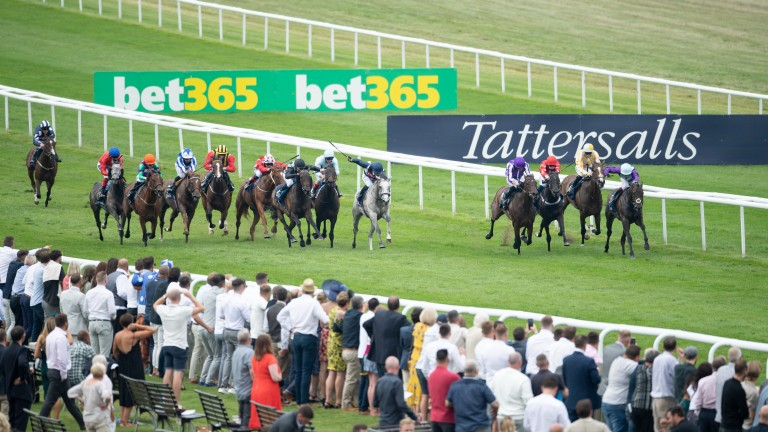 Snow Lantern (grey) and Sean Levey make their move to land the Group 1 Falmouth Stakes