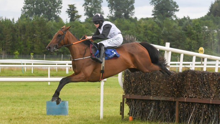 Gin On Lime: won her last three starts over fences