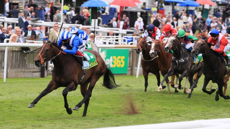 Motakhayyel storms to another Bunbury Cup victory under Frankie Dettori
