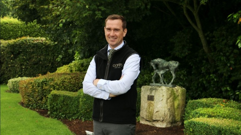 Michael Hardy: joining Goffs as head of sales in the bloodstock department