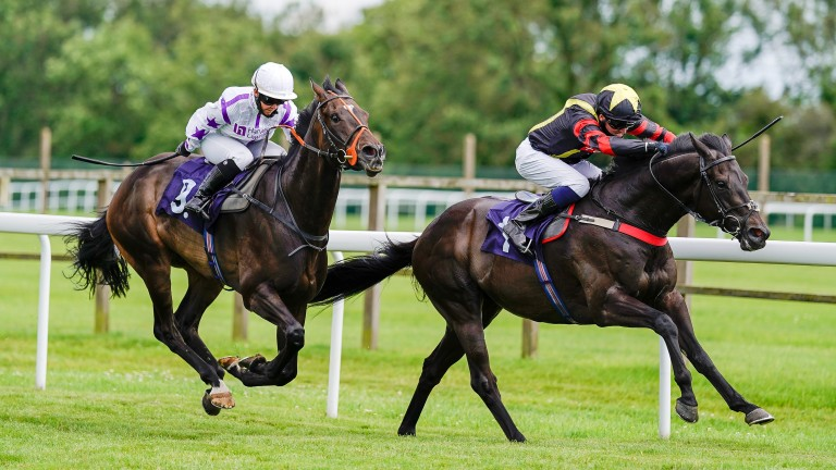 Global Prospector (right): landed his hat-trick at Bath on Tuesday